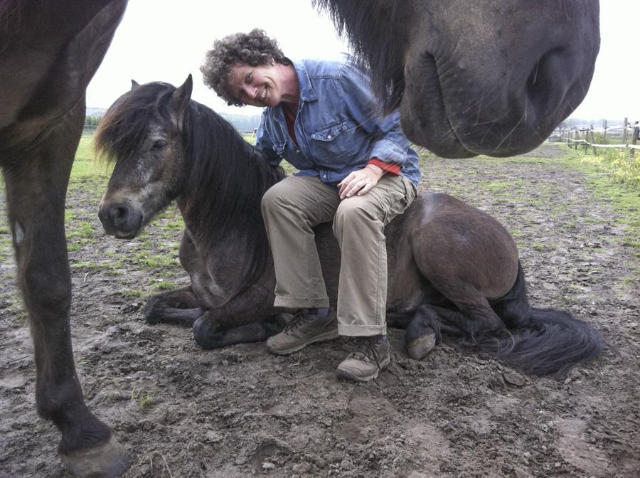 Gertrud Jetten Kinderboeken Dartmoor Pony S